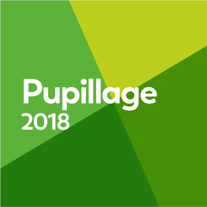 Pupillage Applications 2018