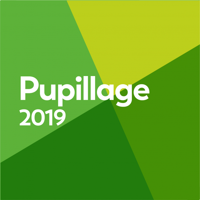 Pupillage Applications 2019